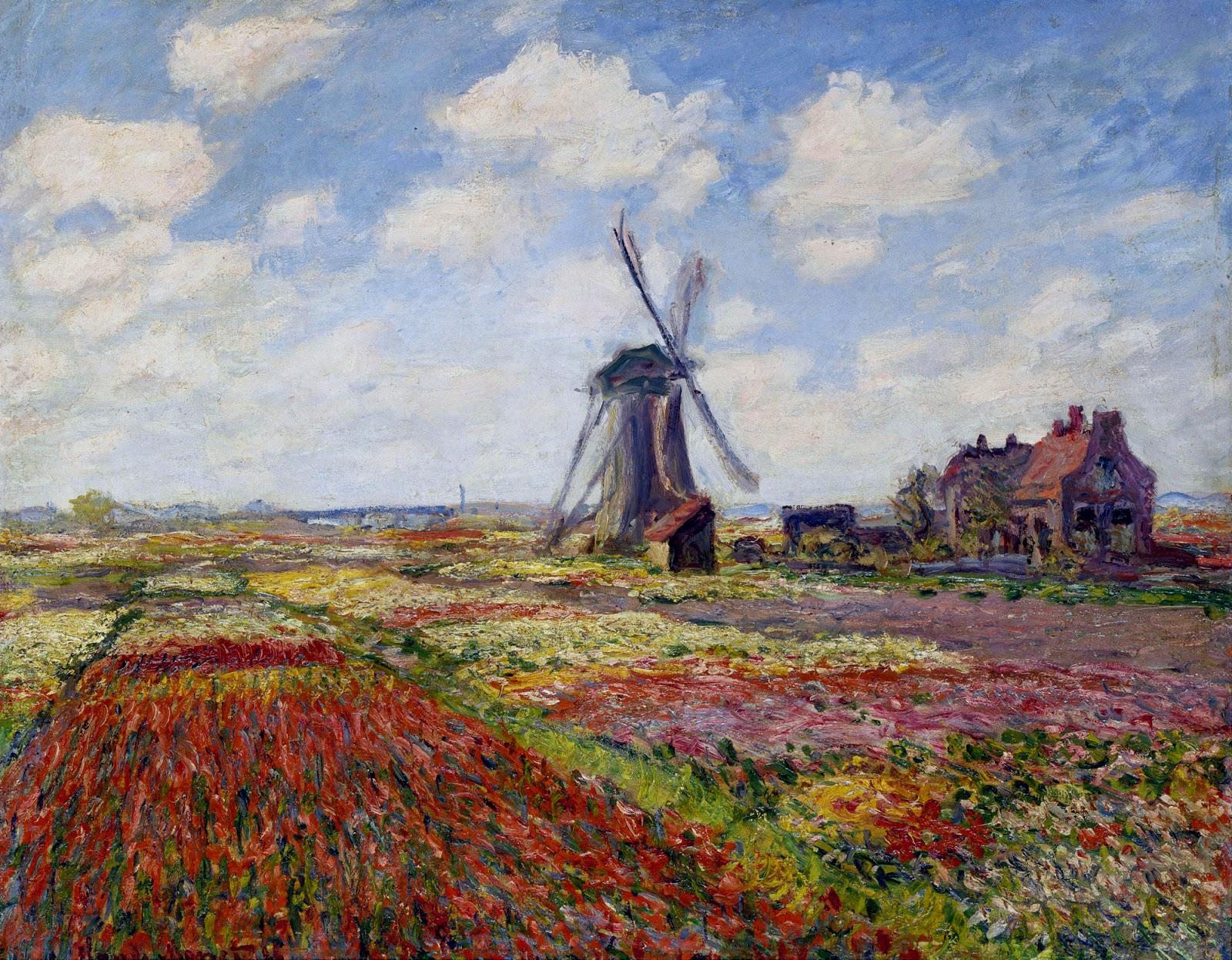 fields-of-tulip-with-the-rijnsburg-windmill